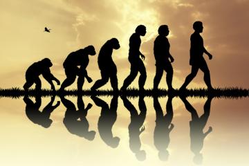 進歩と進化